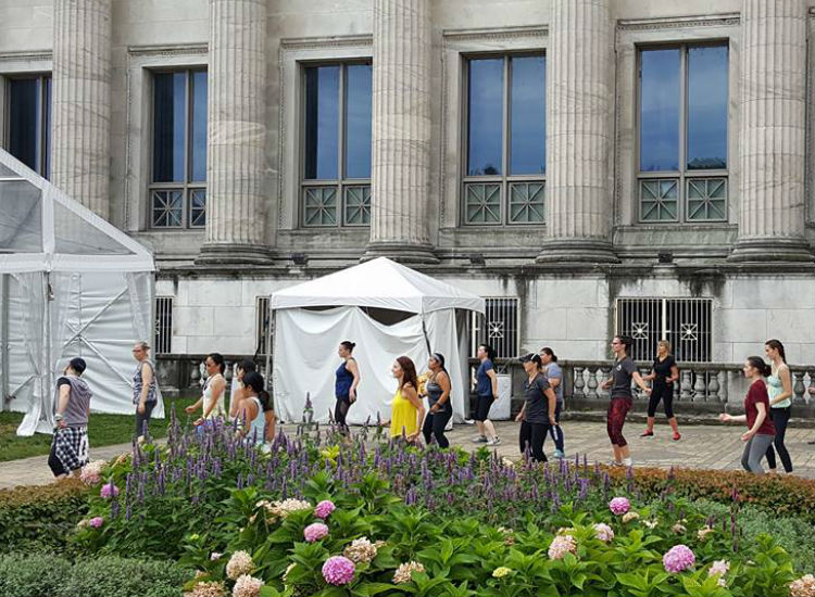 Free yoga at Chicago Field Museum