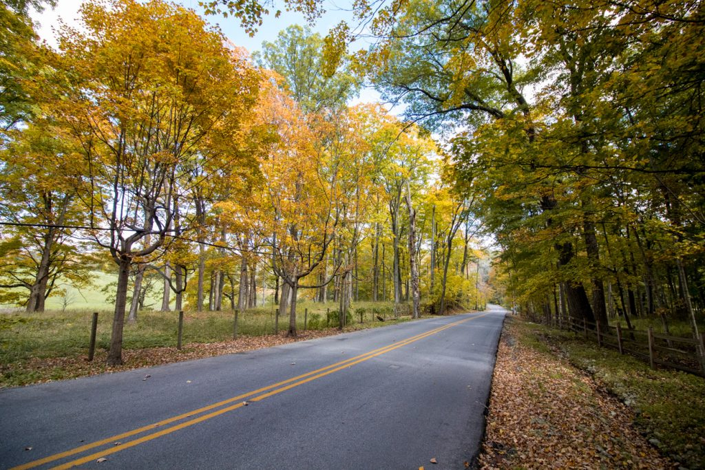 Fall getaway in Lake Geneva Snake Road